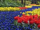весна весной