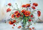 Цветы маки111