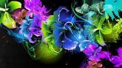 Всем  цветы
