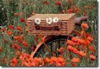 Пакует бережно цветы...