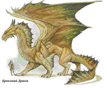 Любимый дракон!