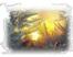 Солнышко в окошко Подарок от автора Кира Ру