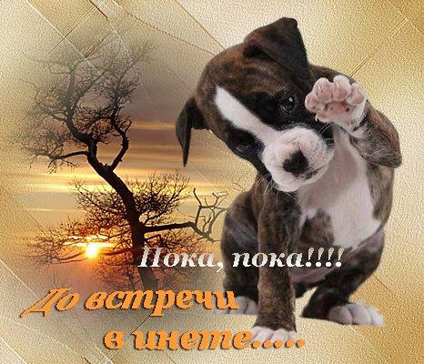Пока, пока!:-) До встречи в инете!:-) )