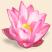 Объёмный цветок Подарок от автора Елизавета Носкова