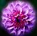 цветочек Подарок от автора Александр Носков