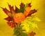 Осенний букет Подарок от автора Борис Ясный