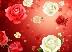 дождь из роз Подарок от автора Алексэндр РОСТОВ