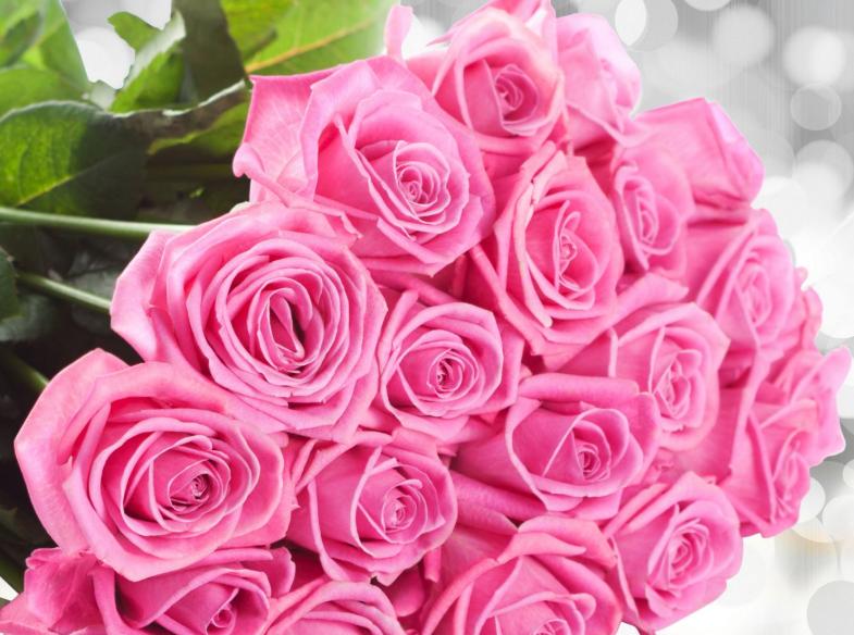 Поздравления с днем рождения букет розовых роз, роз